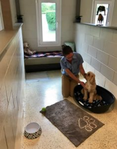 Premium Lodge for dogs at small paws dog hotel
