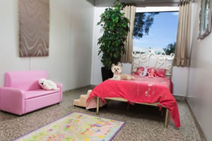 dog boarding north shore sydney Pucci Suites